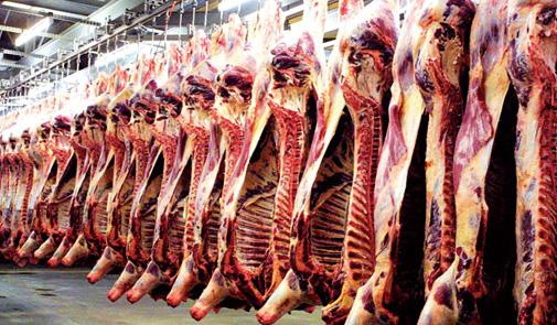 """صورة """" طوارئ """" فى الزراعة استعداداً للعيد .. و """"البنا"""": رقابة على المجازر بالتنسيق مع المحافظين"""