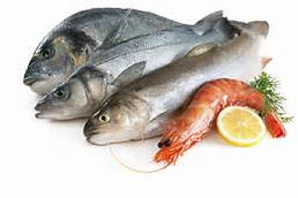 صورة الإحصاء: 6.8٪ زيادة فى كمية الإنتاج السمكي