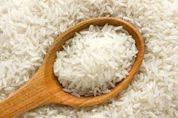صورة ندوة حول زراعة أرز مقاوم للجفاف بنقابة الصحفيين اليوم