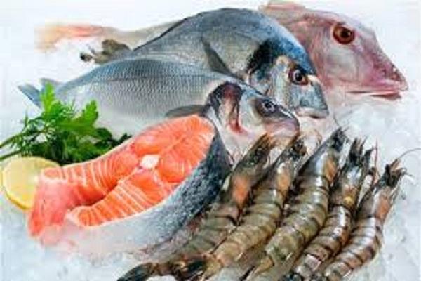 صورة تباين فى أسعار الأسماك بسوق العبور اليوم