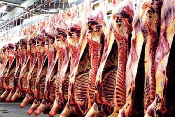 صورة أسعار اللحوم بالمحافظات اليوم