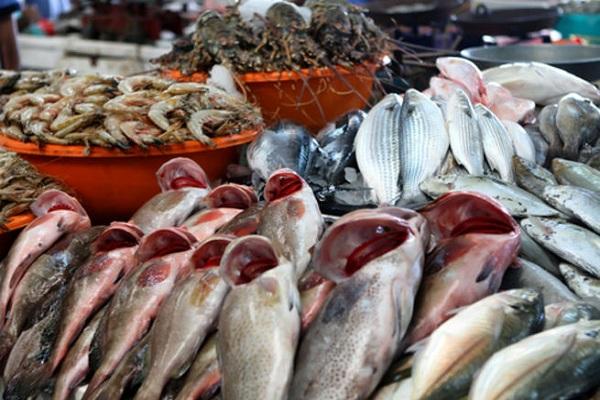 صورة أسعار الأسماك اليوم الجمعة 19 مارس 2021