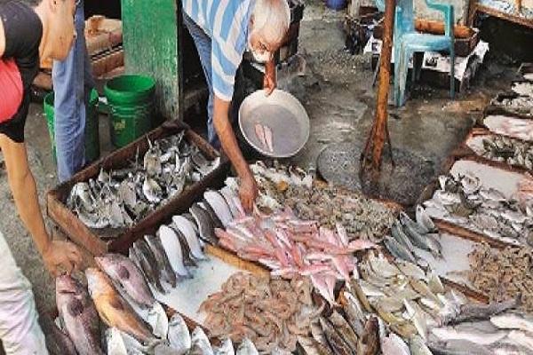 صورة اسعار الأسماك اليوم الأثنين 11 مارس 2019