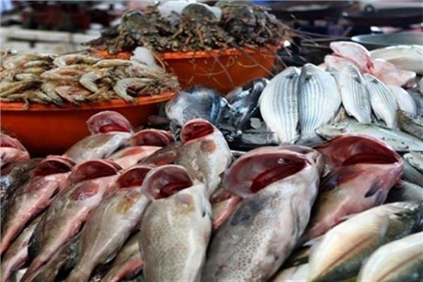 صورة أسعار الأسماك اليوم الاحد 8 نوفمبر 2020