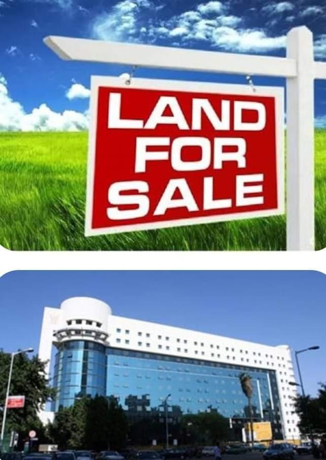 صورة تذمر فى أوساط العاملين.. البنك الزراعى ينفذ خطة للتخلص من الأصول غير المستغلة