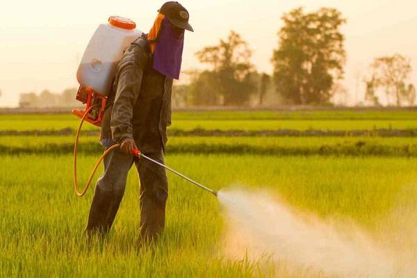 صورة نقابة الفلاحين : جهود السيطرة علي سوق المبيدات لم تصل بعد الي الهدف منها