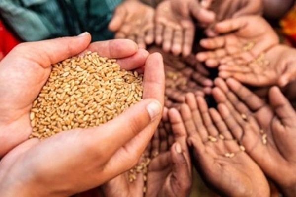 صورة لتعطل الإنتاج الزراعى .. البنك الدولي يحذر من أزمة غذاء محتملة فى أفريقيا بسبب كورونا