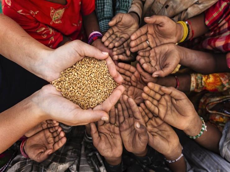 صورة برنامج الغذاء العالمى : اثار اجتماعية واقتصادية كبيرة لوباء كورونا فى نيجيريا
