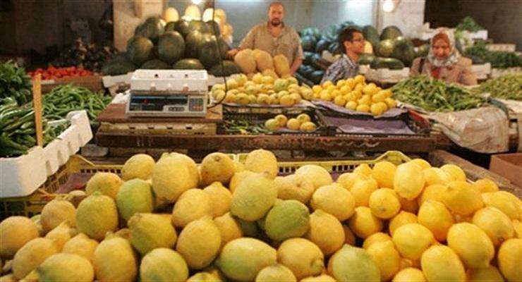 صورة سعر الكيلو جملة بـ 25 جنيه .. نقيب الفلاحين يوضح سبب ارتفاع أسعار الليمون