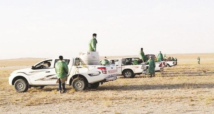 """صورة """"الفلاحين """" تشيد بجهود وزارة الزراعه فى مكافحة الجراد"""