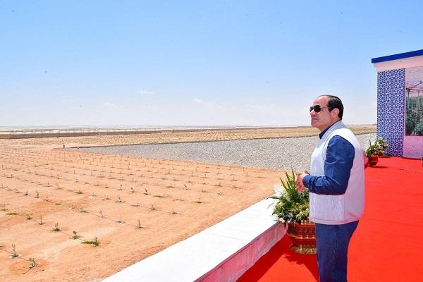 """صورة الدكتور إسماعيل عبد الجليل يكتب : الرئيس يزيل """" الخطوط الحمراء """" بالمصارحه والعلاج"""