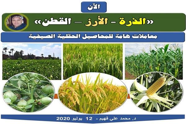 """صورة رسائل الدكتور محمد فهيم : معاملات هامة للمحاصيل الحقلية الصيفية """"الآن"""""""