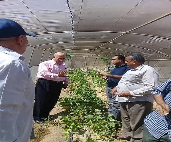 صورة بالصور .. رئيس مكافحة الآفات بوزارة الزراعة يتابع الخطة الاستباقية لحماية المحاصيل بالاسماعيلية