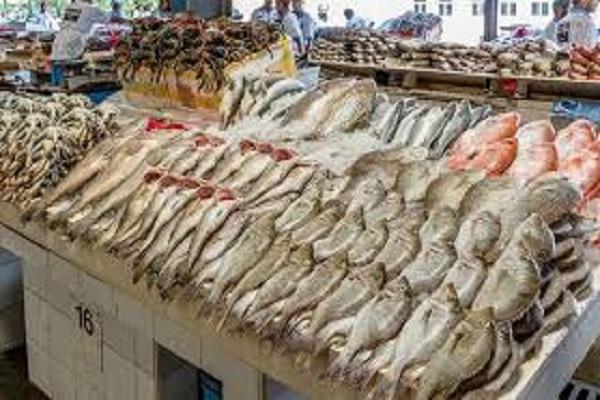 صورة أسعار الأسماك اليوم الخميس 10يونيه 2021