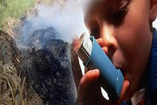 صورة أسيوط : حملات لاتخاذ الاجراءات القانونية لردع حارقي المخلفات الزراعية