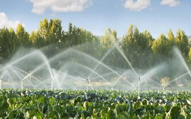 """صورة """"الزراعة"""" تنظم دورة تدريبية لمهندسي تحسين الأراضي ضمن مشروع تحديث الري الحقلي"""