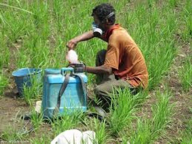 صورة تعرف على قواعد خلط المبيدات ومخاطر عدم الالتزام بالتعليمات