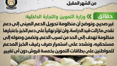 صورة تعرف على حقيقة تحويل دعم الخبز العيني لدعم نقدي بدءاً من الشهر المقبل
