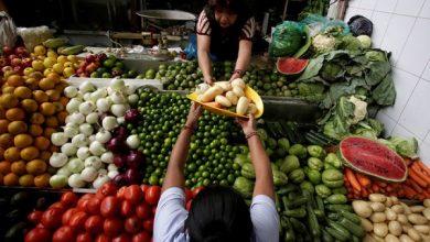 صورة اسعار الخضروات والفاكهة اليوم الاثنين 18 يناير 2021 .. كيلو البطاطس بـ 2.5 جنيه