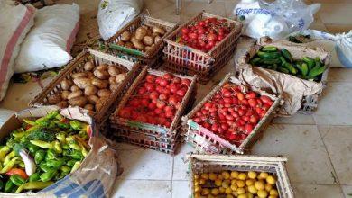 صورة عبوات صغيرة لتلبية احتياجات الاسرة .. اسعار الخضروات والفاكهة اليوم الثلاثاء 9 فبراير 2021