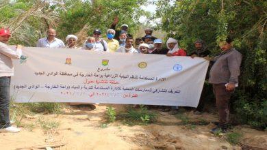 صورة بالصور .. بحوث الصحراء والفاو ينظمان ورش عمل مجتمعية للممارسات الزراعية السليمة بالخارجة