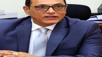 """صورة رئيس """" الريف المصرى"""" : مناقصتان لتوليد وتقديم خدمات الكهرباء لأراضى الـ 1.5 مليون فدان"""