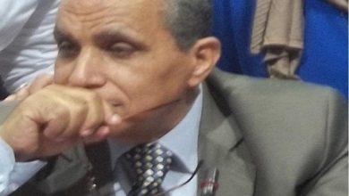 صورة الدكتور على عبد الرحمن يكتب : معالجة فجوة البيانات في مكافحة التدفقات المالية غير المشروعة في مجلات التجارة الداخلية والخارجية