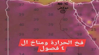 """صورة الدكتور محمد فهيم يكتب : """"فخ الحرارة"""" … ومناخ الـ 4 فصول ( 10 نصائح مهمة للمزارعين )"""