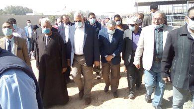 صورة نقيب الفلاحين يشيد بمشروع استزراع 20 الف فدان غرب غرب المنيا (يضم مزرعة نموزجية للجاموس)