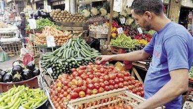 صورة سعر كيلو البامية ..اسعار الخضروات والفاكهة اليوم الأحد 13 يونيه 2021