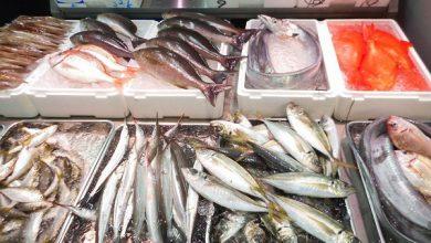 صورة سعر كيلو الجمبرى .. أسعار الأسماك اليوم الثلاثاء 7 سبتمبر 2021 بسوق العبور