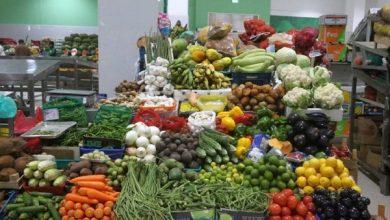 صورة بالتعاون مع القطاع الخاص.. تطوير سلسلة القيمة للخضروات والفاكهة .. تحديات وفرص واعدة للنمو