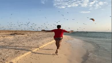 صورة حملة دعائية ضمن الاحتفال بيوم السياحة العالمي للترويج للمحافظات المصرية ..فيديو